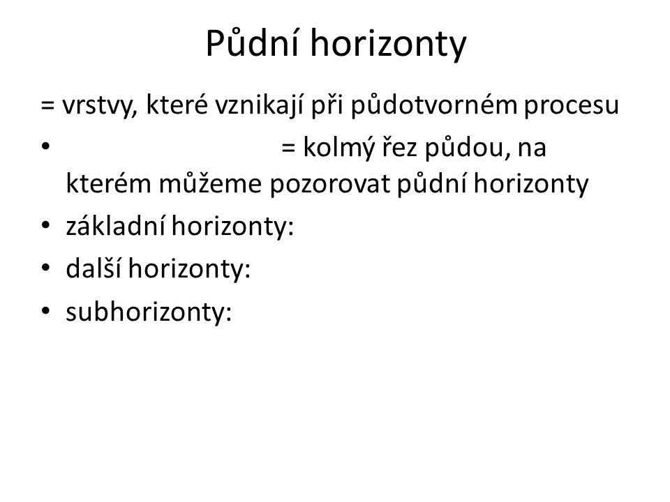 Půdní horizonty = vrstvy, které vznikají při půdotvorném procesu = kolmý řez půdou, na kterém můžeme pozorovat půdní horizonty základní horizonty: další horizonty: subhorizonty: