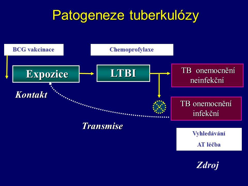 TB onemocnění infekční TB onemocnění neinfekční TB onemocnění neinfekční Patogeneze tuberkulózy BCG vakcinace Chemoprofylaxe Vyhledávání AT léčba Expo