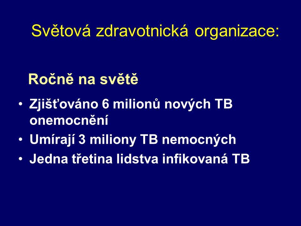 Světová zdravotnická organizace: Zjišťováno 6 milionů nových TB onemocnění Umírají 3 miliony TB nemocných Jedna třetina lidstva infikovaná TB Ročně na