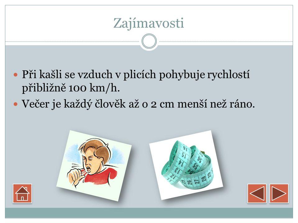 Odkazy http://biology.webnode.cz/news/zajimavustky-o-lidkem-tele/ http://www.motor-sport- magazin.cz/sprava/prispevky/20071220152055_res.jpg http://www.motor-sport- magazin.cz/sprava/prispevky/20071220152055_res.jpg http://adykacer.blog.cz/0811/oko http://www.chytrazena.cz/obrazky/admin/clanek/nahled-nehty-1- 37.jpg http://www.chytrazena.cz/obrazky/admin/clanek/nahled-nehty-1- 37.jpg http://www.baky.cz/fotky8095/fotos/_vyr_790detske099.jpg http://www.cpzp.cz/galerie/01/big/srdce.jpg http://www.vseprozdravi.cz/images/kasel-1.gif http://www.stoklasa.cz/fotkymaxi/050897_1.jpg?20120713092329