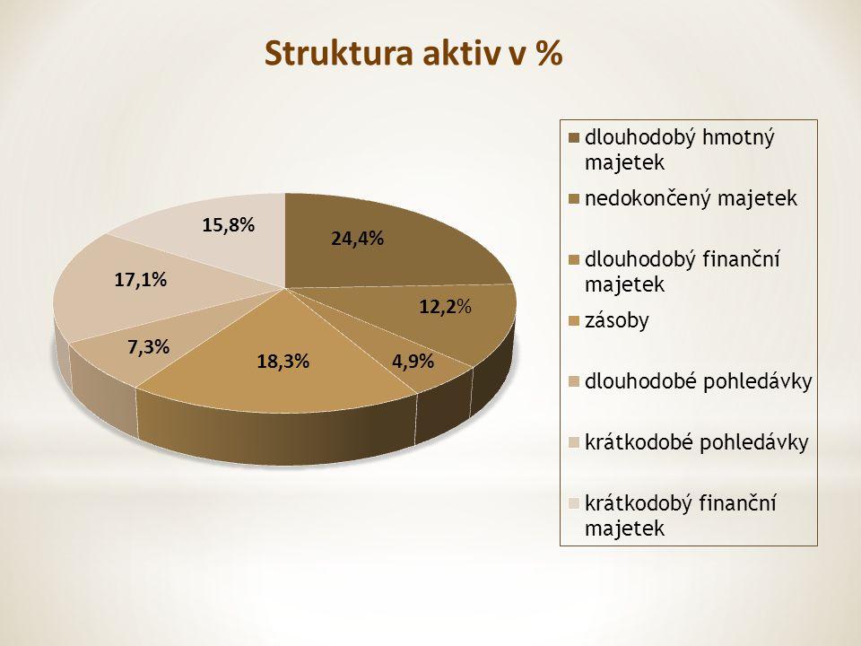 4,9% 17,1% 15,8% 12,2% 24,4% 18,3% 7,3% Struktura aktiv v %