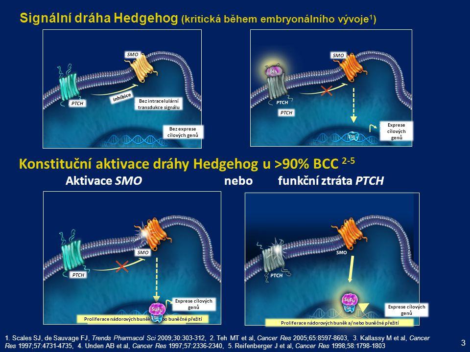 Vismodegib je prvním ve třídě perorálních, selektivních inhibitorů dráhy Hedgehog 1.