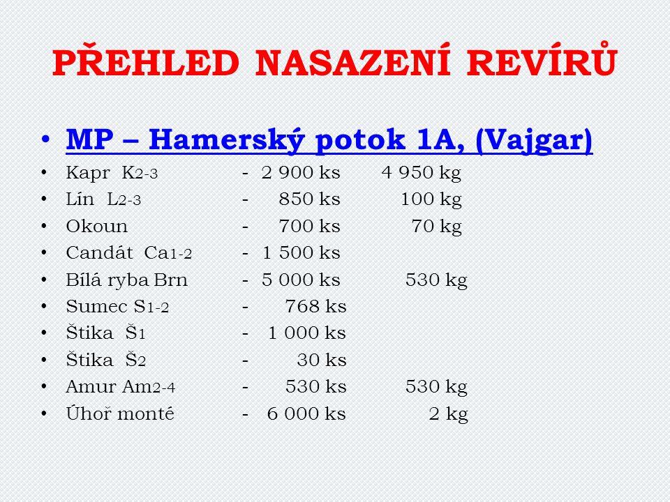 PŘEHLED NASAZENÍ REVÍRŮ MP – Hamerský potok 1A, (Vajgar) Kapr K 2-3 - 2 900 ks 4 950 kg Lín L 2-3 - 850 ks 100 kg Okoun- 700 ks 70 kg Candát Ca 1-2 -