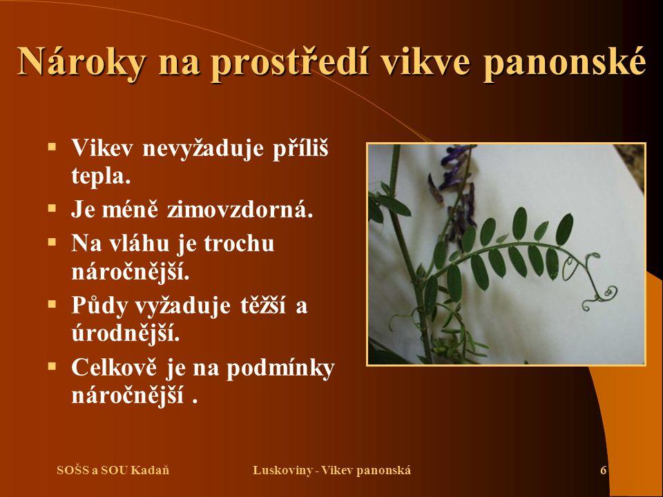 SOŠS a SOU KadaňLuskoviny - Vikev panonská6 Nároky na prostředí vikve panonské  Vikev nevyžaduje příliš tepla.  Je méně zimovzdorná.  Na vláhu je t