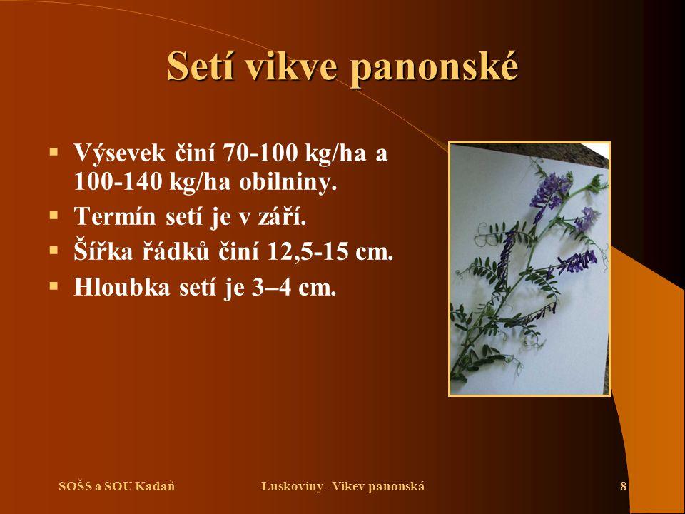 SOŠS a SOU KadaňLuskoviny - Vikev panonská8 Setí vikve panonské  Výsevek činí 70-100 kg/ha a 100-140 kg/ha obilniny.  Termín setí je v září.  Šířka