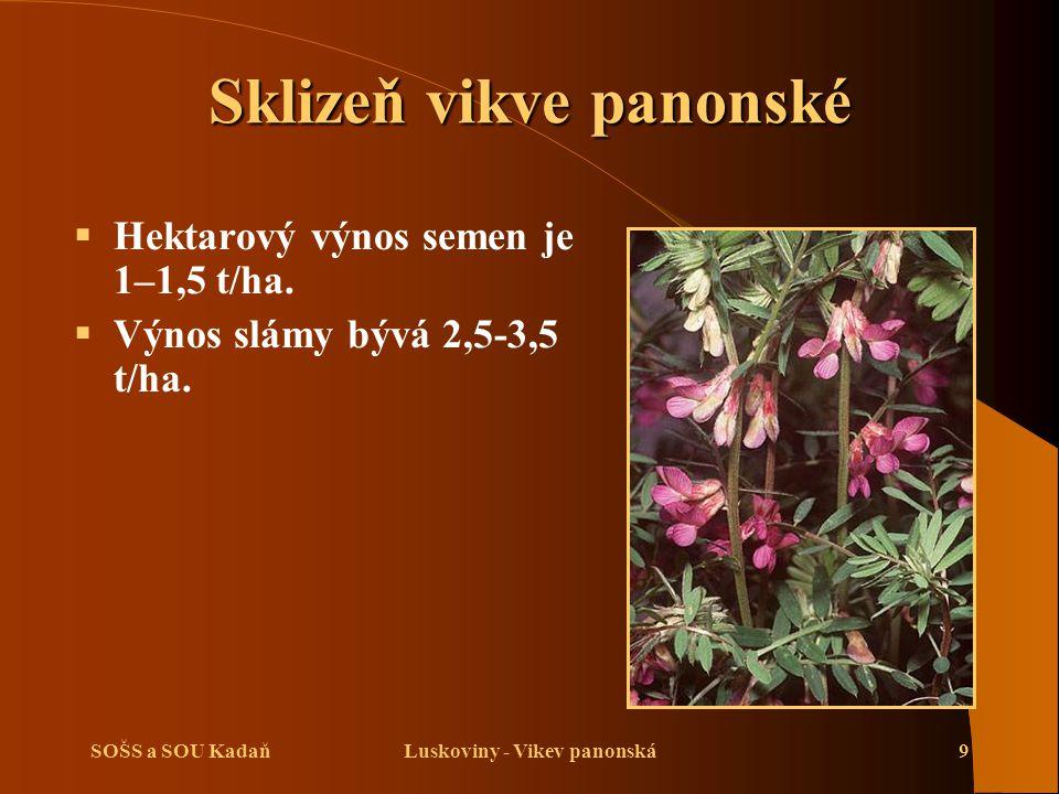SOŠS a SOU KadaňLuskoviny - Vikev panonská9 Sklizeň vikve panonské  Hektarový výnos semen je 1–1,5 t/ha.  Výnos slámy bývá 2,5-3,5 t/ha.