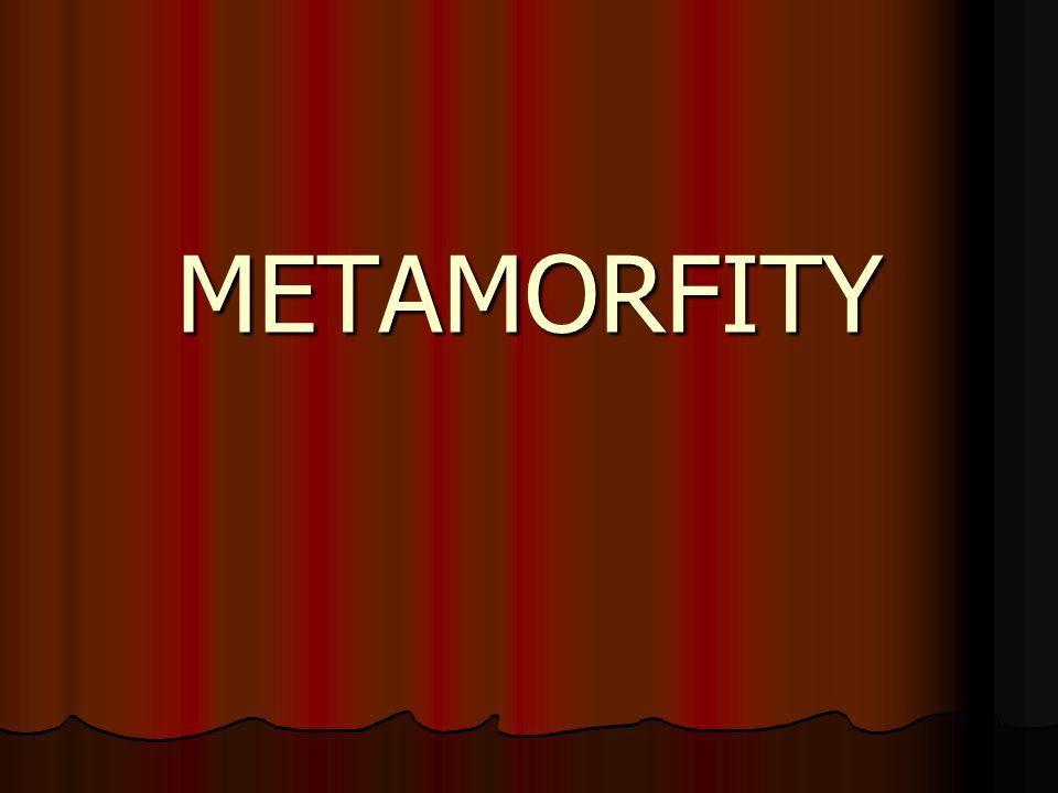 VZNIK METAMORFITŮ z jakékoli jiné horniny z jakékoli jiné horniny vliv: TEPLOTA TLAK orientovaný tlak parciální tlak fluid chemizmus vstupujících členů čas vliv: TEPLOTA TLAK orientovaný tlak parciální tlak fluid chemizmus vstupujících členů čas přeměna = metamorfóza = proces zvaný blastéza vznik metamorfních minerálů přeměna = metamorfóza = proces zvaný blastéza vznik metamorfních minerálů