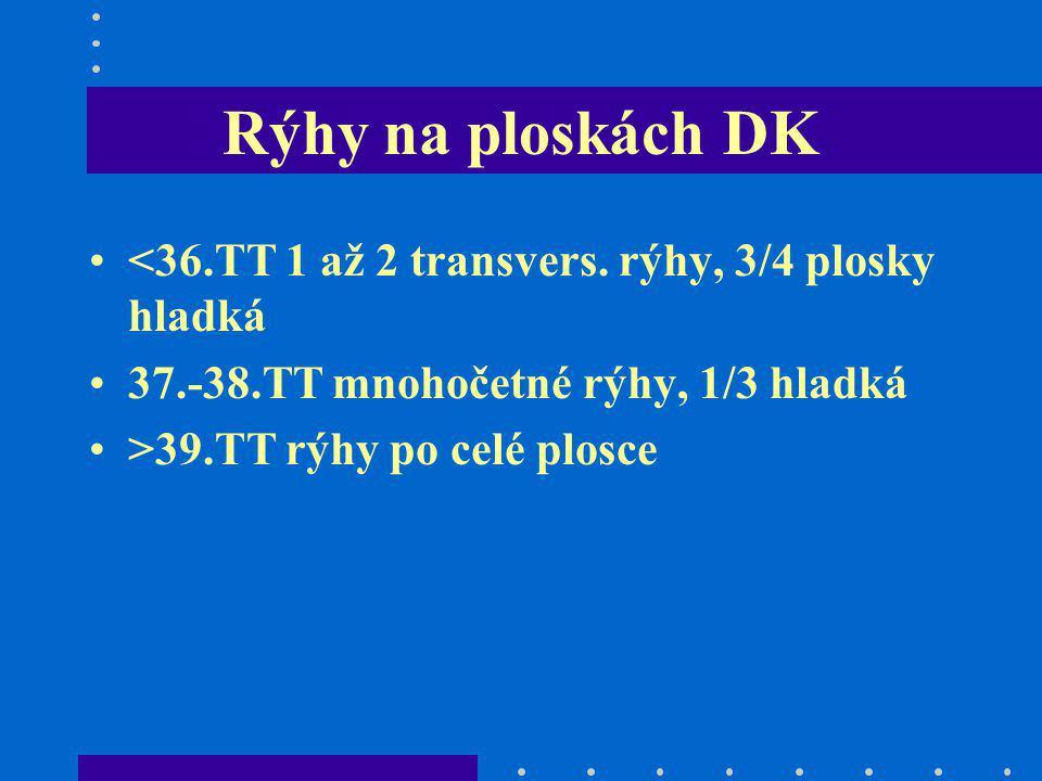 Rýhy na ploskách DK <36.TT 1 až 2 transvers. rýhy, 3/4 plosky hladká 37.-38.TT mnohočetné rýhy, 1/3 hladká >39.TT rýhy po celé plosce