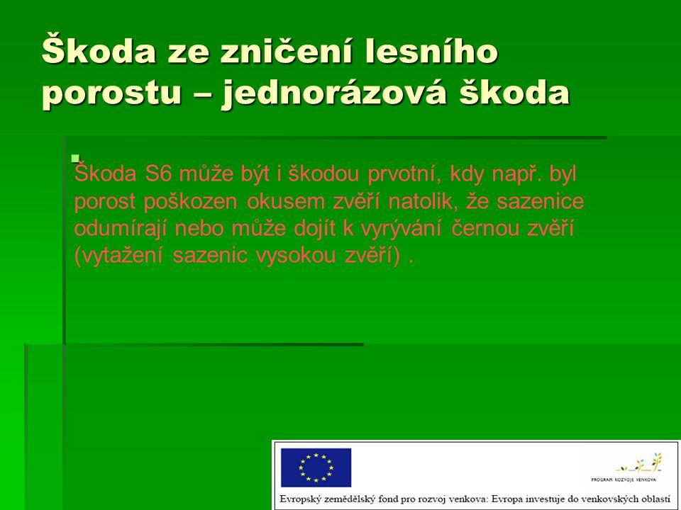 Škoda ze zničení lesního porostu – jednorázová škoda  Škoda S6 může být i škodou prvotní, kdy např.