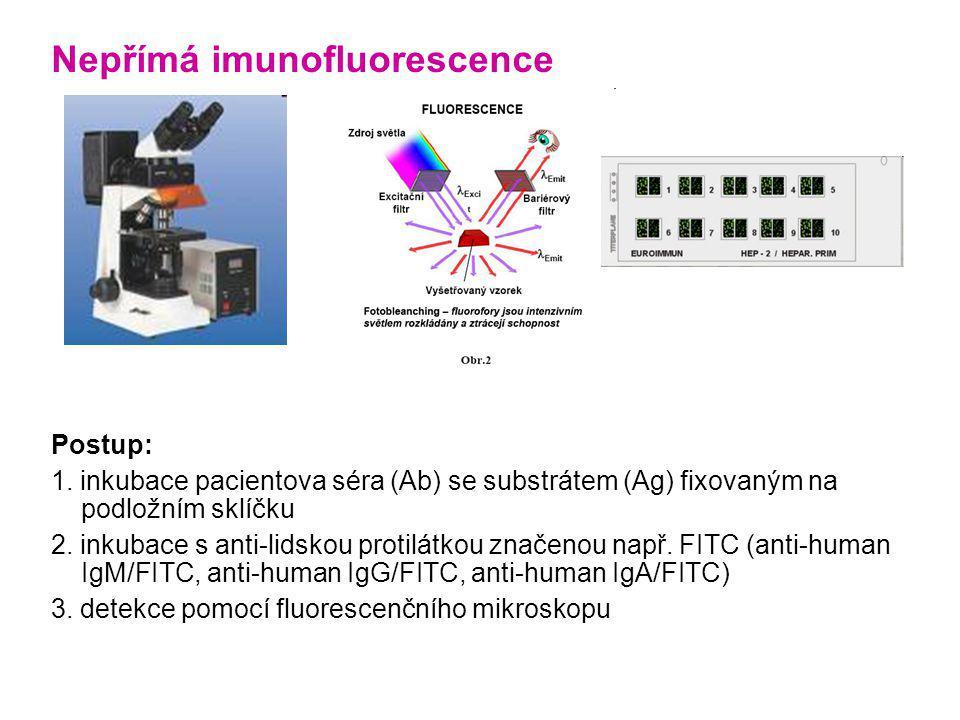 Nepřímá imunofluorescence Postup: 1. inkubace pacientova séra (Ab) se substrátem (Ag) fixovaným na podložním sklíčku 2. inkubace s anti-lidskou protil