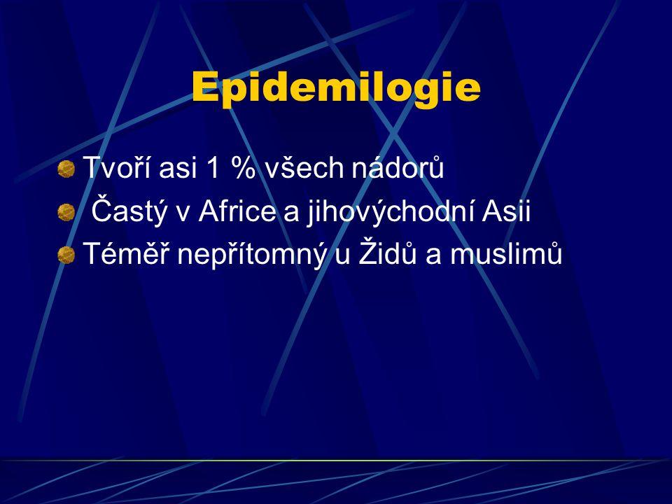 Epidemilogie Tvoří asi 1 % všech nádorů Častý v Africe a jihovýchodní Asii Téměř nepřítomný u Židů a muslimů