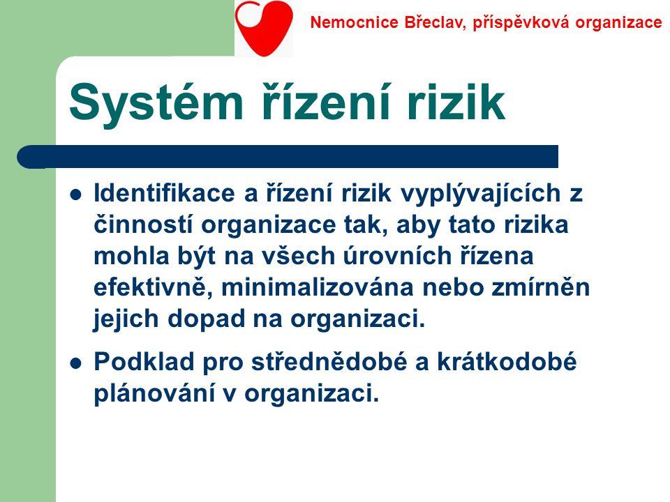 Systém řízení rizik Identifikace a řízení rizik vyplývajících z činností organizace tak, aby tato rizika mohla být na všech úrovních řízena efektivně,