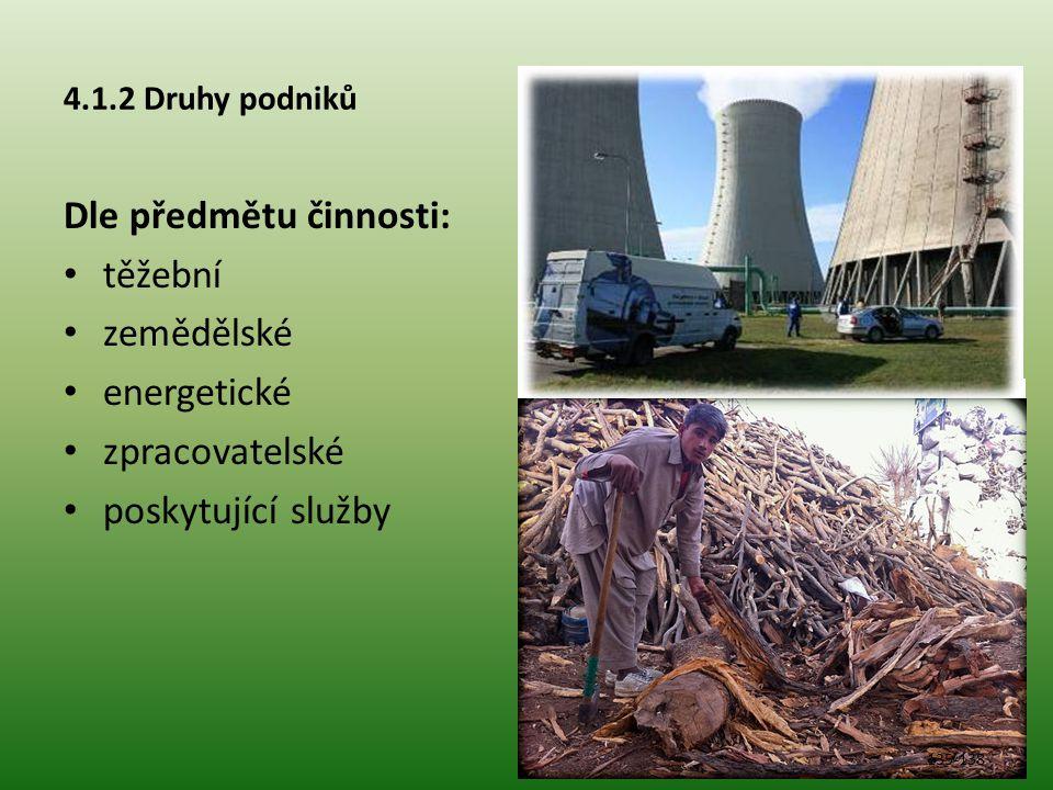 4.1.2 Druhy podniků Dle předmětu činnosti: těžební zemědělské energetické zpracovatelské poskytující služby 135-138