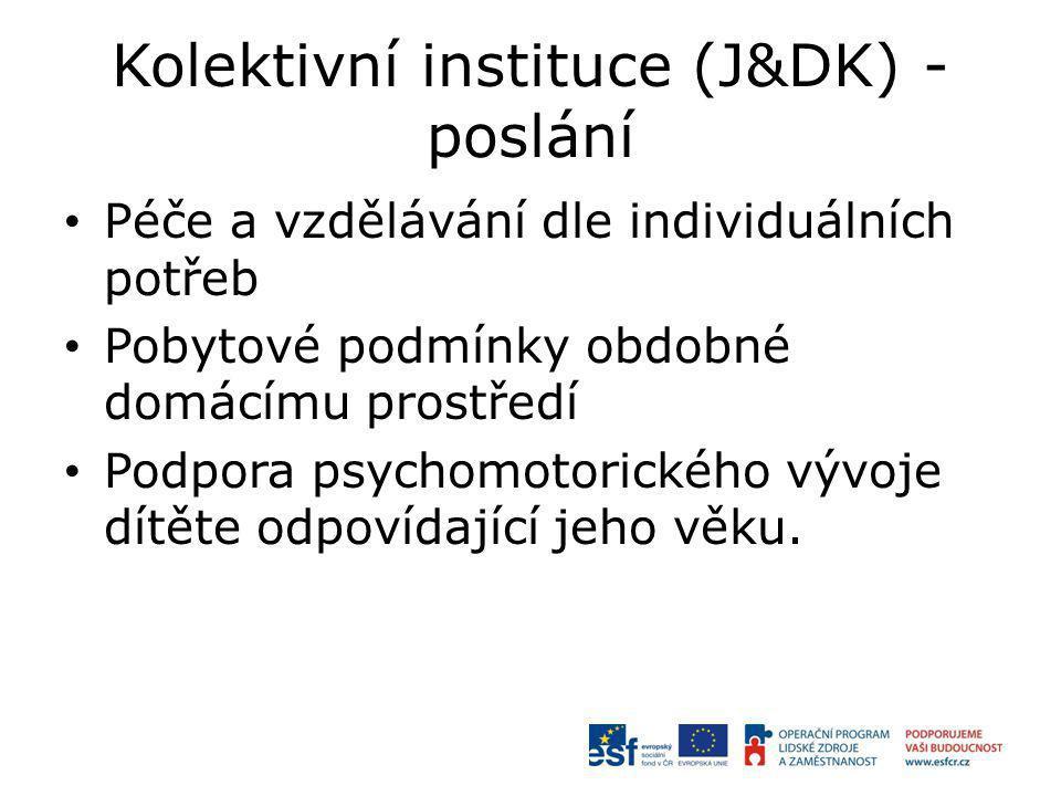 Kolektivní instituce (J&DK) - poslání Péče a vzdělávání dle individuálních potřeb Pobytové podmínky obdobné domácímu prostředí Podpora psychomotorického vývoje dítěte odpovídající jeho věku.