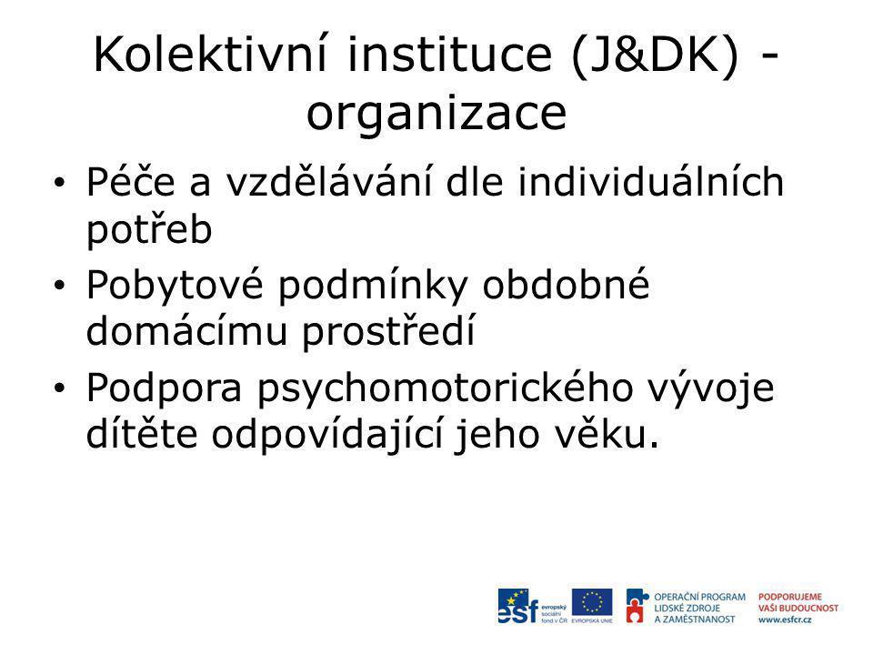 Kolektivní instituce (J&DK) - organizace Péče a vzdělávání dle individuálních potřeb Pobytové podmínky obdobné domácímu prostředí Podpora psychomotorického vývoje dítěte odpovídající jeho věku.