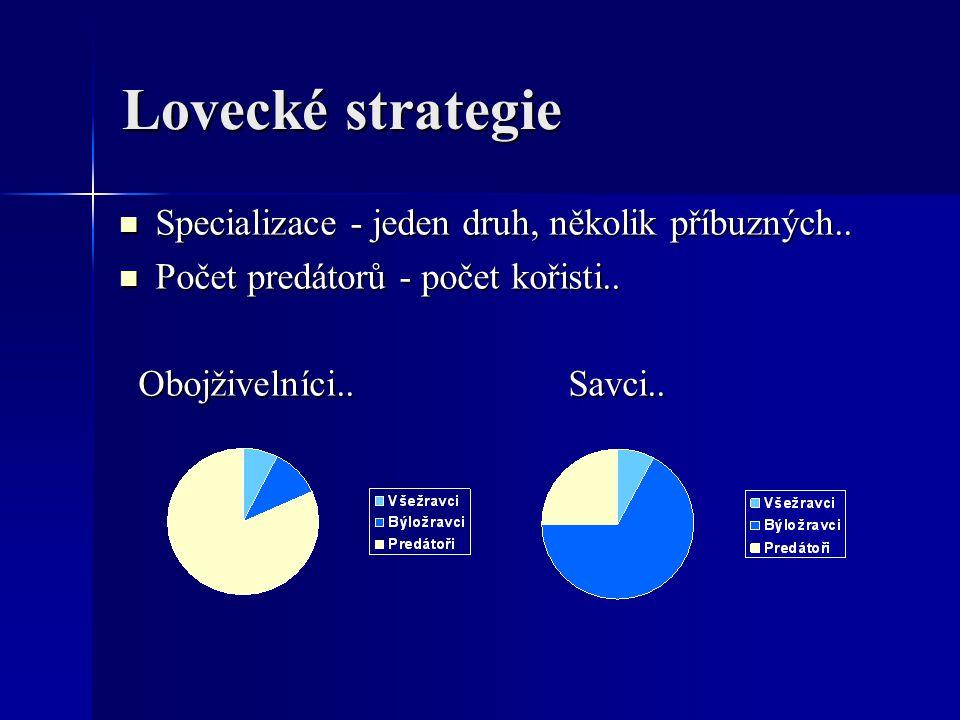 Lovecké strategie Specializace - jeden druh, několik příbuzných.. Specializace - jeden druh, několik příbuzných.. Počet predátorů - počet kořisti.. Po