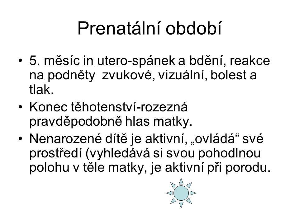 Prenatální období 5.