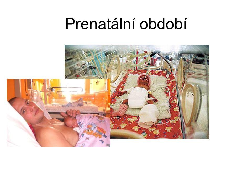 Prenatální období