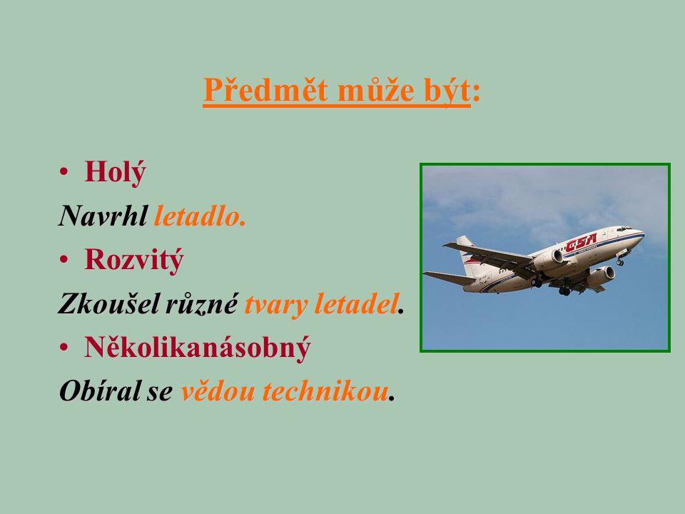 Předmět může být: HolýHolý Navrhl letadlo. RozvitýRozvitý Zkoušel různé tvary letadel. NěkolikanásobnýNěkolikanásobný Obíral se vědou technikou.