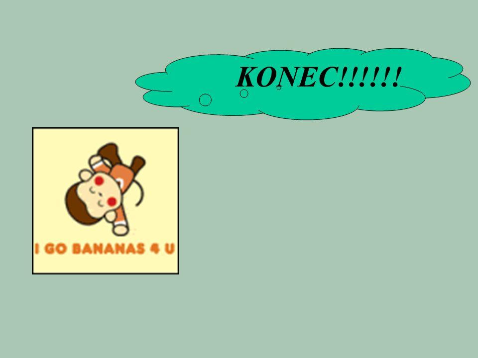 KONEC!!!!!!