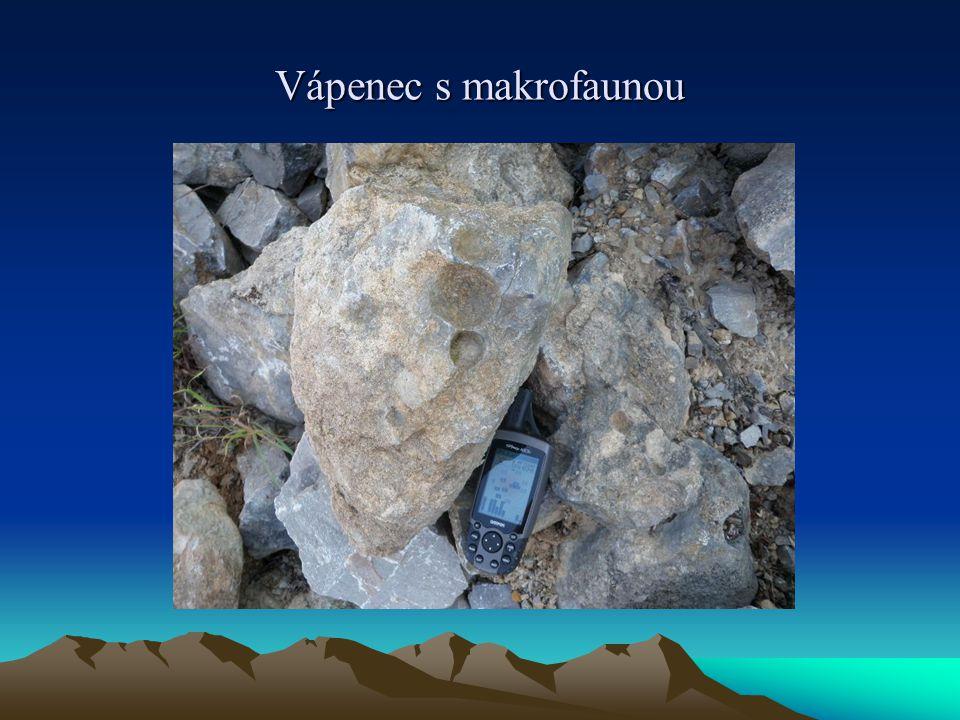 Regionální geologie světa  Regionální geologie světa se zabývá geologickou historií, horninami a tektonickými strukturami jednotlivých oblastí světa.
