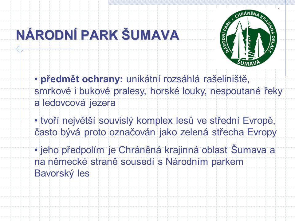 NÁRODNÍ PARK ŠUMAVA předmět ochrany: unikátní rozsáhlá rašeliniště, smrkové i bukové pralesy, horské louky, nespoutané řeky a ledovcová jezera tvoří n