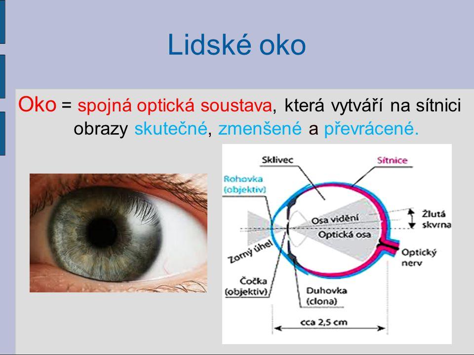 Lidské oko Oko = spojná optická soustava, která vytváří na sítnici obrazy skutečné, zmenšené a převrácené. 46