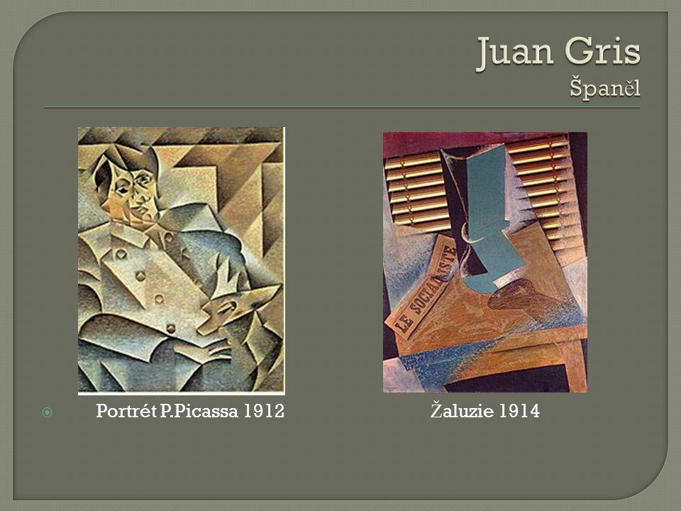  Portrét P.Picassa 1912 Ž aluzie 1914