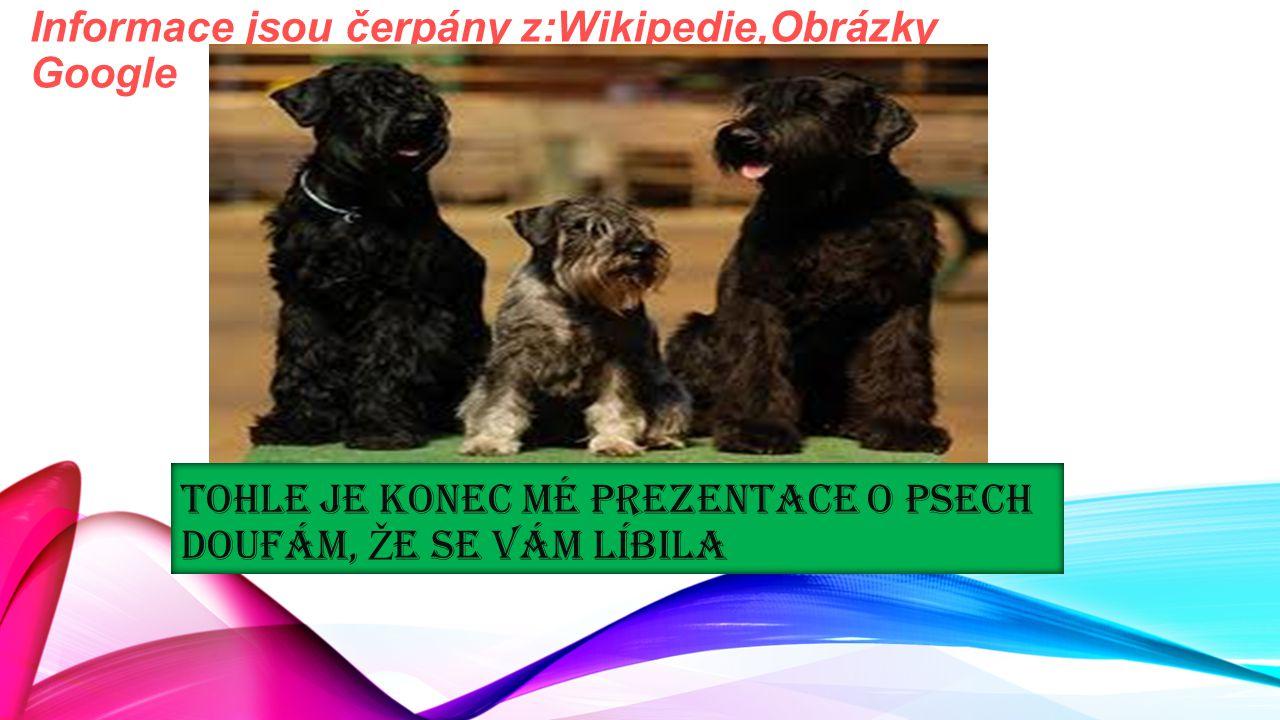 TOHLE JE KONEC MÉ PREZENTACE O PSECH DOUFÁM, Ž E SE VÁM LÍBILA Informace jsou čerpány z:Wikipedie,Obrázky Google