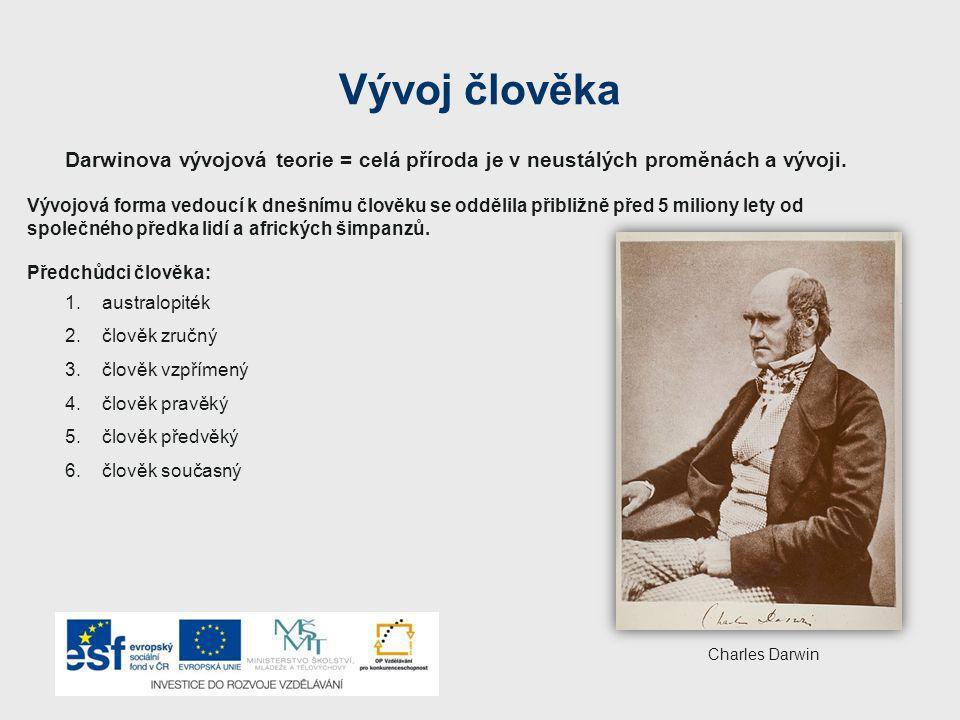 Vývoj člověka Darwinova vývojová teorie = celá příroda je v neustálých proměnách a vývoji. Vývojová forma vedoucí k dnešnímu člověku se oddělila přibl