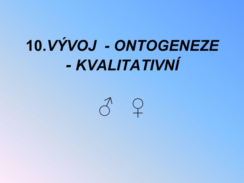 10.VÝVOJ - ONTOGENEZE - KVALITATIVNÍ ♂ ♀
