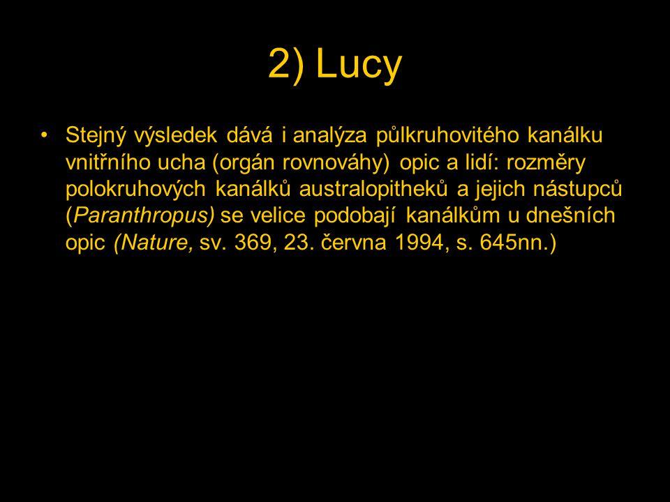 2) Lucy Stejný výsledek dává i analýza půlkruhovitého kanálku vnitřního ucha (orgán rovnováhy) opic a lidí: rozměry polokruhových kanálků australopitheků a jejich nástupců (Paranthropus) se velice podobají kanálkům u dnešních opic (Nature, sv.