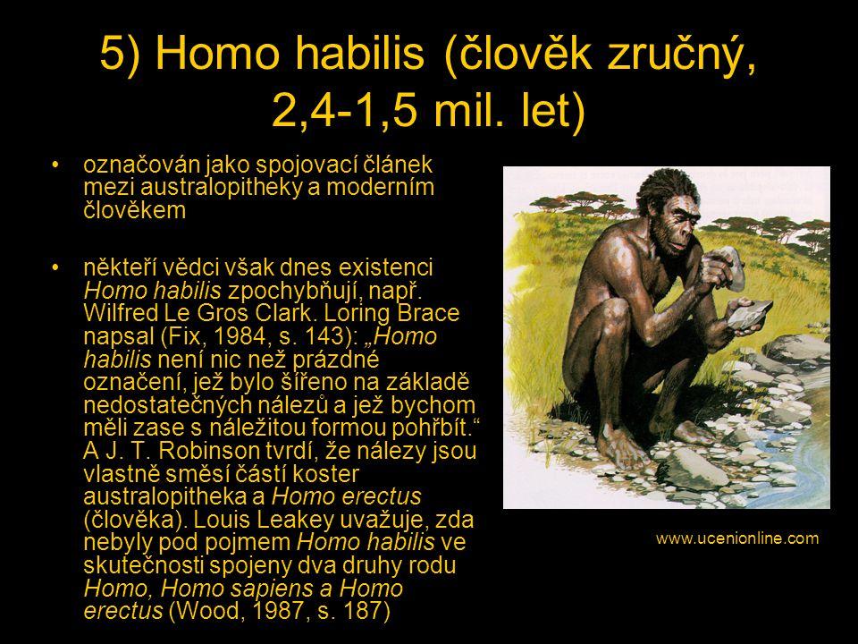 5) Homo habilis (člověk zručný, 2,4-1,5 mil.
