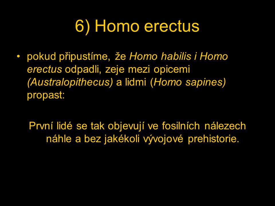 6) Homo erectus pokud připustíme, že Homo habilis i Homo erectus odpadli, zeje mezi opicemi (Australopithecus) a lidmi (Homo sapines) propast: První lidé se tak objevují ve fosilních nálezech náhle a bez jakékoli vývojové prehistorie.