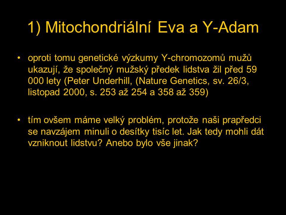 oproti tomu genetické výzkumy Y-chromozomů mužů ukazují, že společný mužský předek lidstva žil před 59 000 lety (Peter Underhill, (Nature Genetics, sv