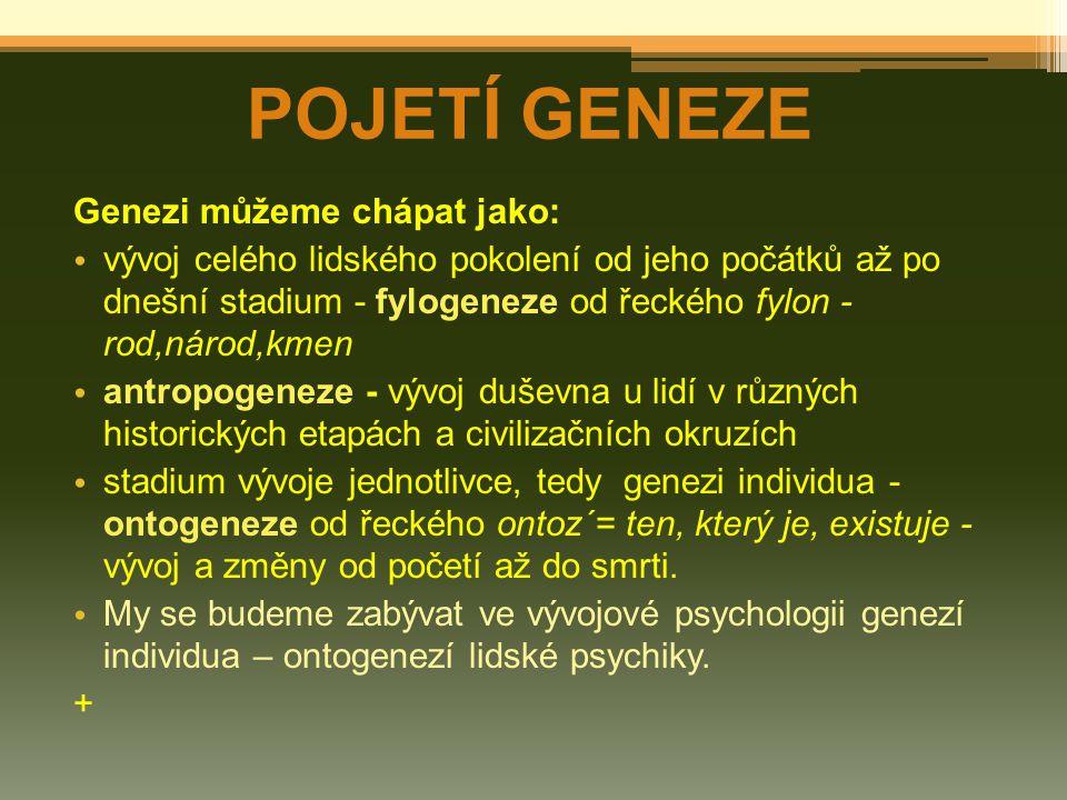 Genezi můžeme chápat jako: vývoj celého lidského pokolení od jeho počátků až po dnešní stadium - fylogeneze od řeckého fylon - rod,národ,kmen antropog