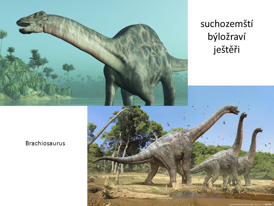 suchozemští býložraví ještěři Brachiosaurus