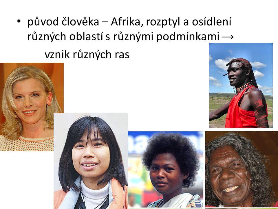 původ člověka – Afrika, rozptyl a osídlení různých oblastí s různými podmínkami → vznik různých ras