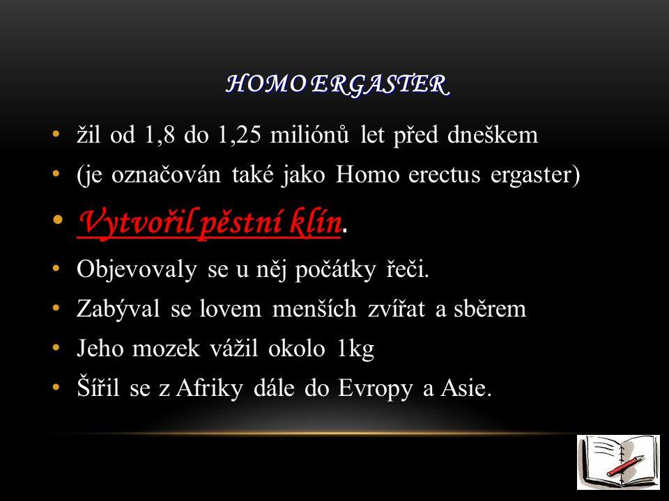 HOMO ERGASTER žil od 1,8 do 1,25 miliónů let před dneškem (je označován také jako Homo erectus ergaster) Vytvořil pěstní klín Vytvořil pěstní klín.