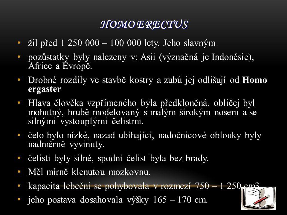 HOMO ERECTUS žil před 1 250 000 – 100 000 lety.