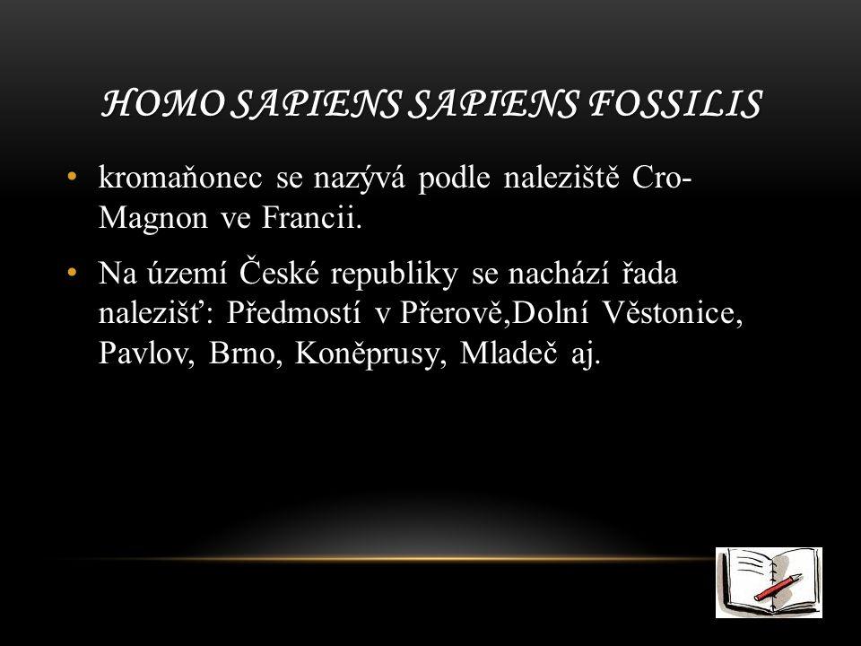HOMO SAPIENS SAPIENS FOSSILIS kromaňonec se nazývá podle naleziště Cro- Magnon ve Francii.