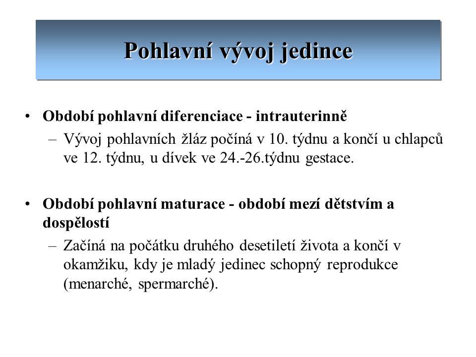 Pohlavní vývoj jedince Období pohlavní diferenciace - intrauterinně –Vývoj pohlavních žláz počíná v 10. týdnu a končí u chlapců ve 12. týdnu, u dívek