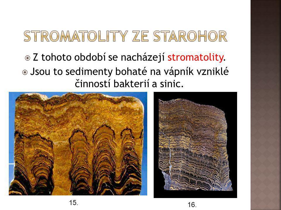  Z tohoto období se nacházejí stromatolity.  Jsou to sedimenty bohaté na vápník vzniklé činností bakterií a sinic. 15. 16.
