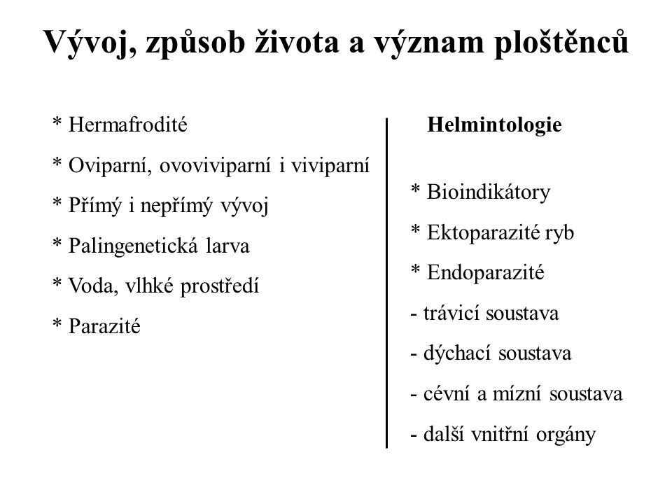 Vývoj, způsob života a význam ploštěnců * Hermafrodité * Oviparní, ovoviviparní i viviparní * Přímý i nepřímý vývoj * Palingenetická larva * Voda, vlh