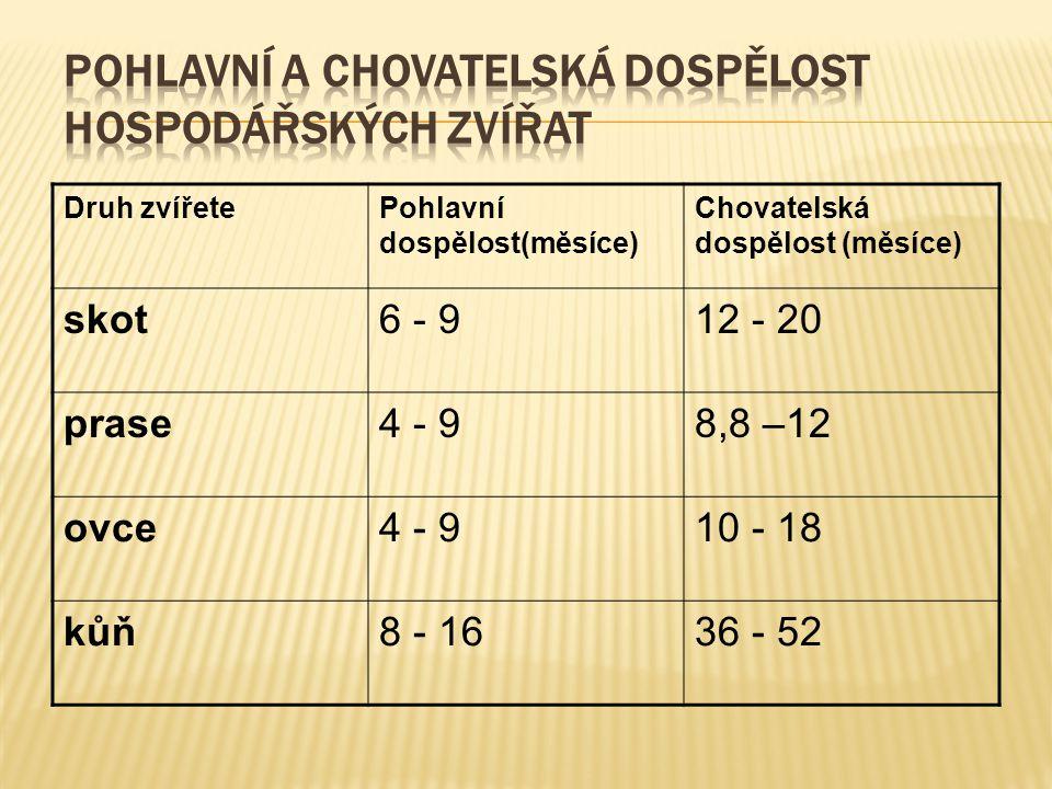Druh zvířetePohlavní dospělost(měsíce) Chovatelská dospělost (měsíce) skot6 - 912 - 20 prase4 - 98,8 –12 ovce4 - 910 - 18 kůň8 - 1636 - 52