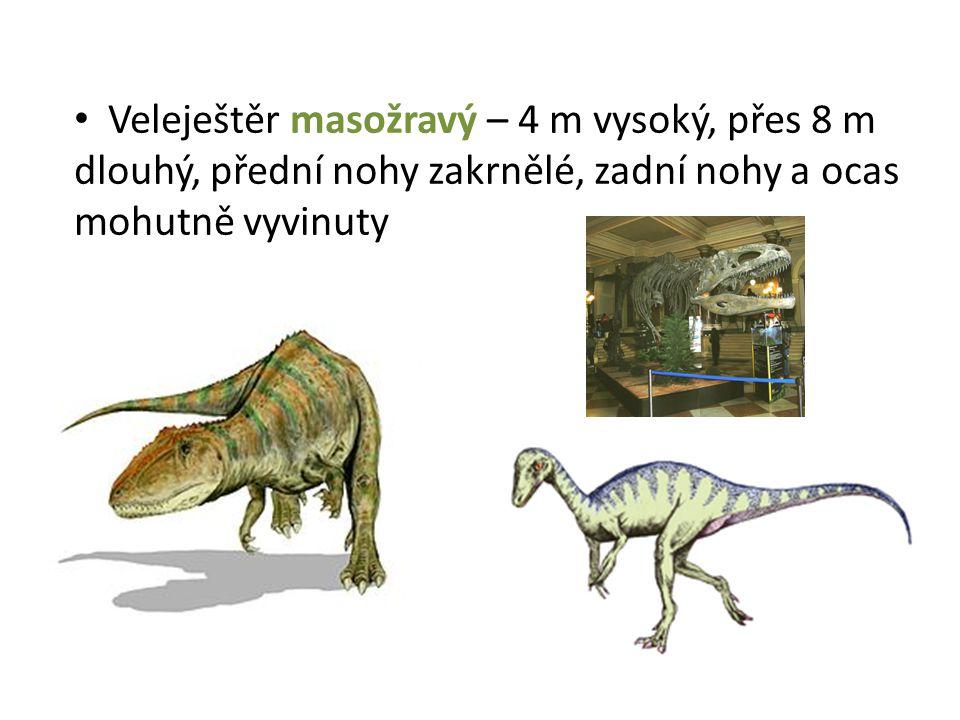 Veleještěr masožravý – 4 m vysoký, přes 8 m dlouhý, přední nohy zakrnělé, zadní nohy a ocas mohutně vyvinuty