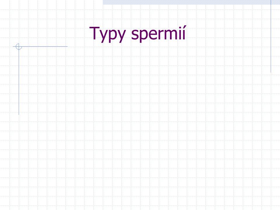 Typy spermií