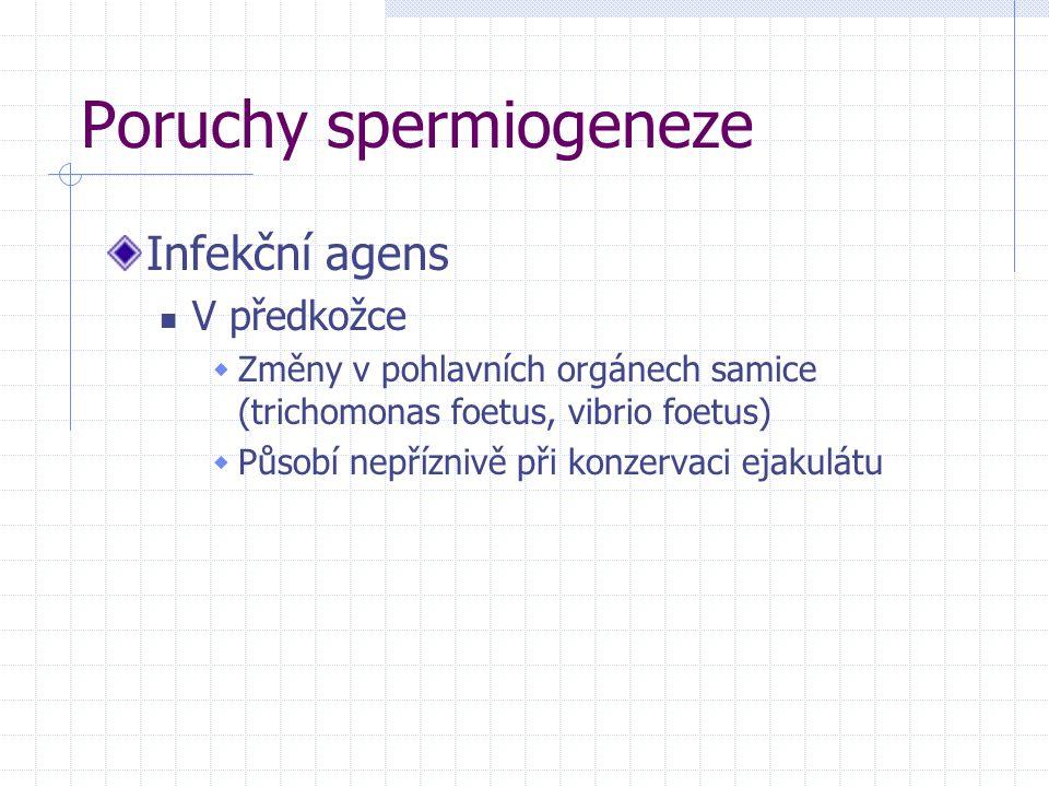 Poruchy spermiogeneze Infekční agens V předkožce  Změny v pohlavních orgánech samice (trichomonas foetus, vibrio foetus)  Působí nepříznivě při konz