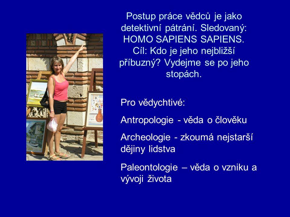 Homo erectus Člověk vzpřímený Výška 155 – 170 cm muži, ženy menší Robustní, ale hbití Opět větší mozek, 900 – 1060 ccm Potrava: sběr rostlin, lov menších zvířat Výroba kamenných nástrojů