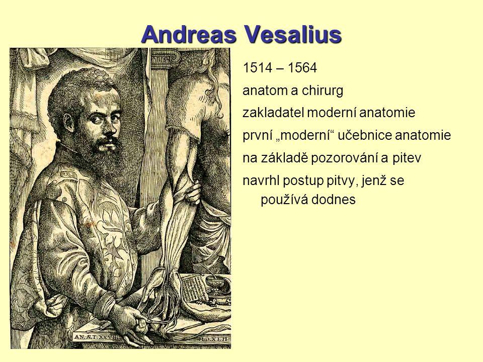 """Andreas Vesalius 1514 – 1564 anatom a chirurg zakladatel moderní anatomie první """"moderní"""" učebnice anatomie na základě pozorování a pitev navrhl postu"""
